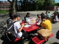Picnic Lunch and Learn